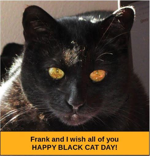 Frank the Cat
