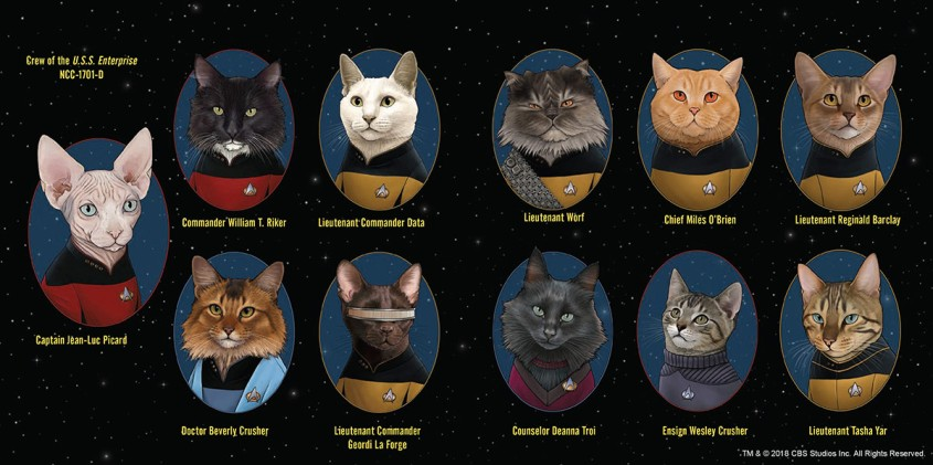 Cats of Star Trek