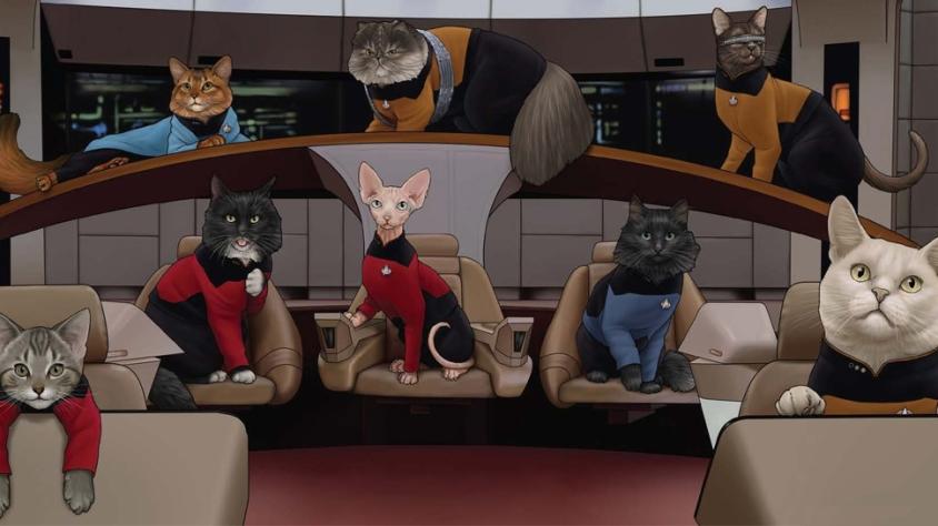 TNG-Cats