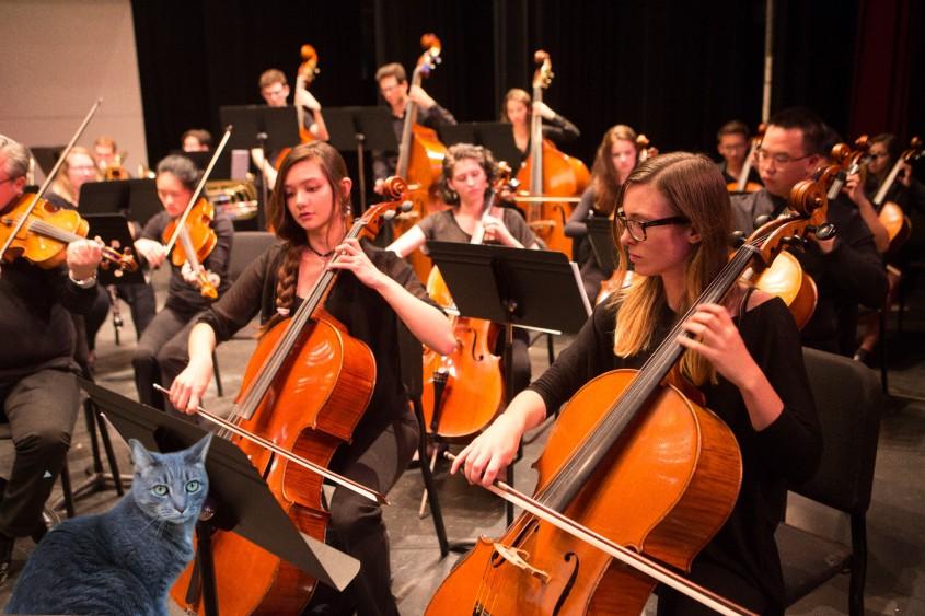 BuddyFest 2020 Orchestral Practice