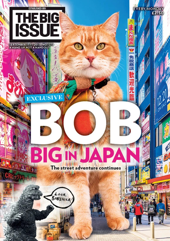 Street Cat Bob On The Big Issue
