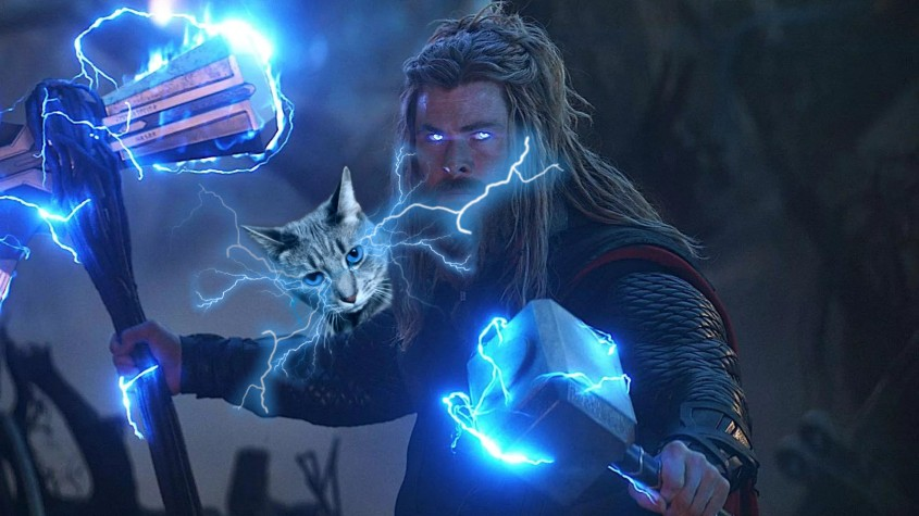 Thor with Buddy