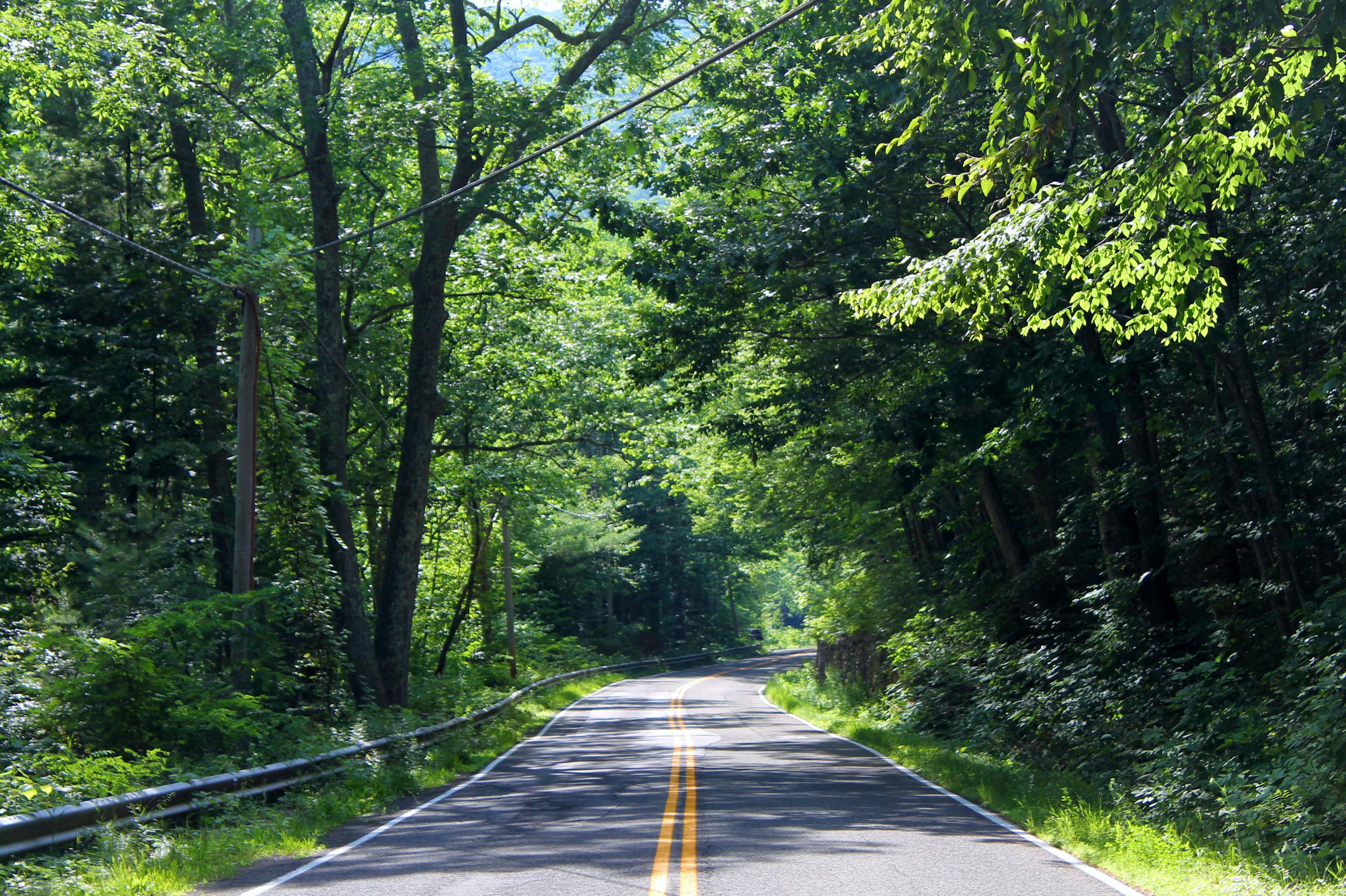 catskills_road