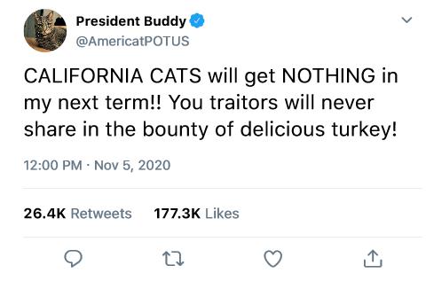 buddytweet