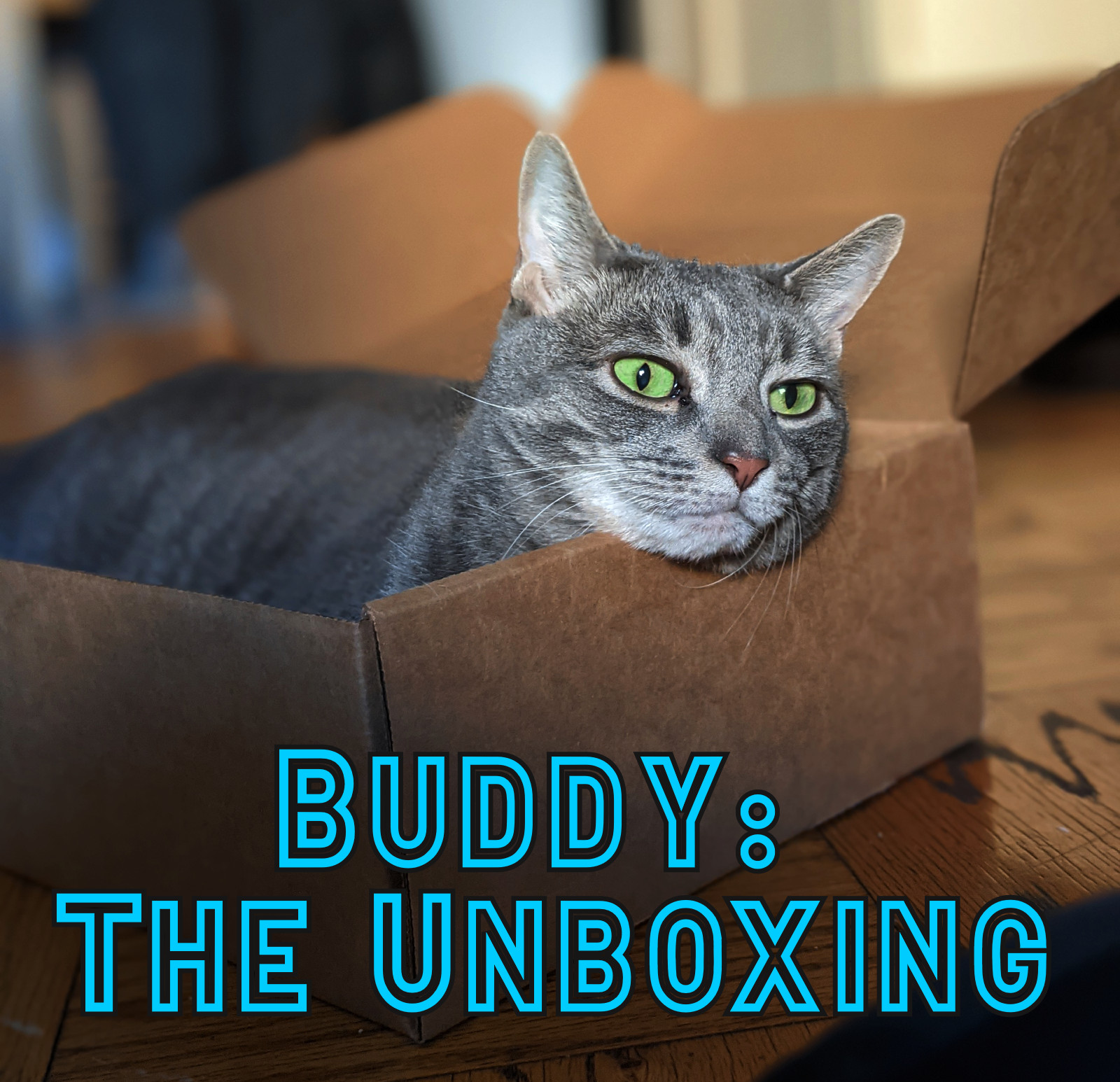 Buddy: The Unboxing