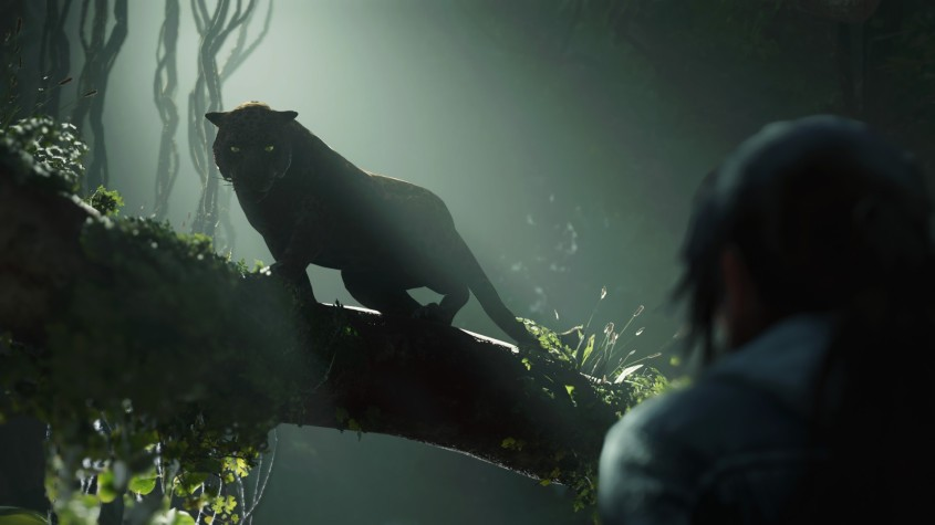 Jaguar of the Tomb Raider