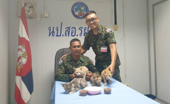 Thatsaphon Saii, seated, carried the cats on his back to the safety of the Thai navy vessel. Credit: Wichit Pukdeelon/Thai Royal Navy
