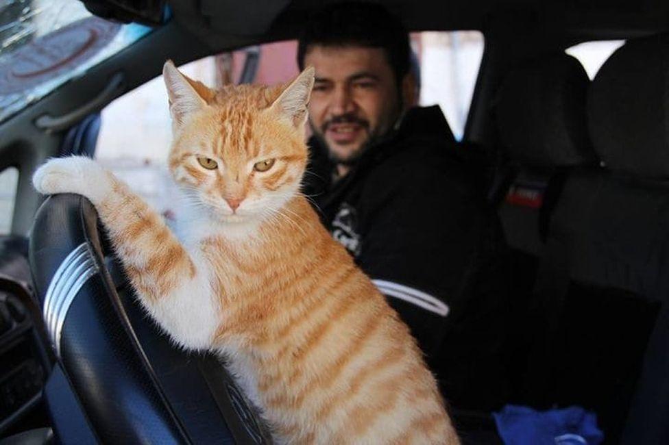 Ernesto and Alaa