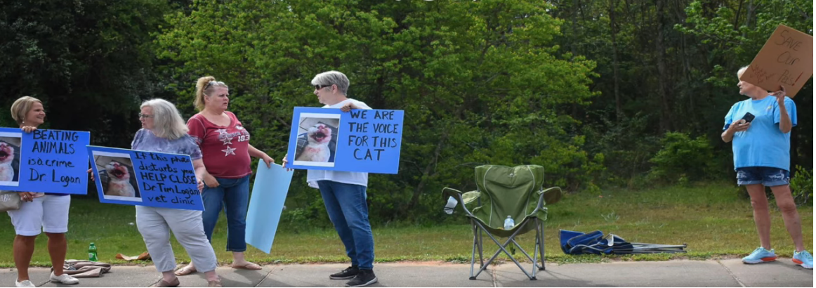 Animal abuse protesters