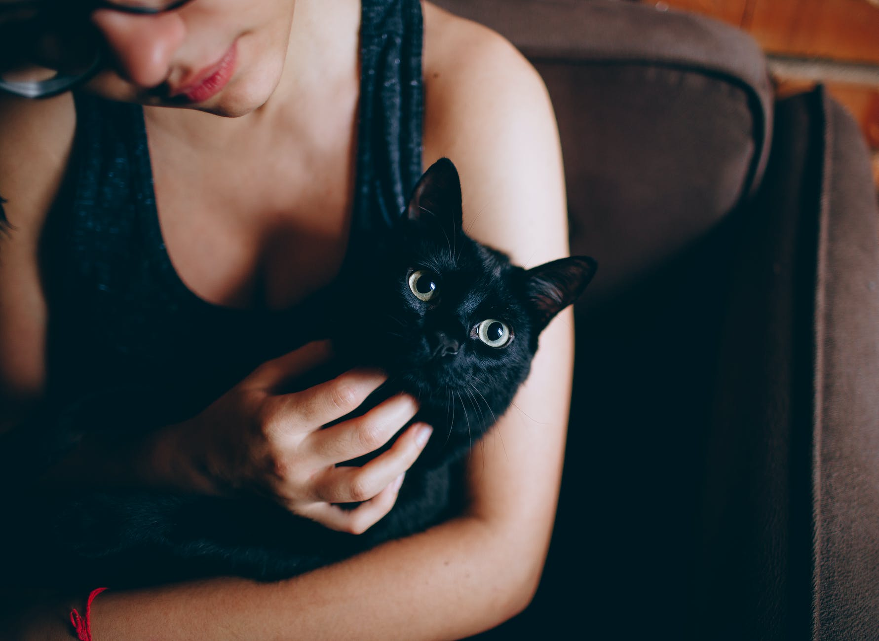 person carrying black cat