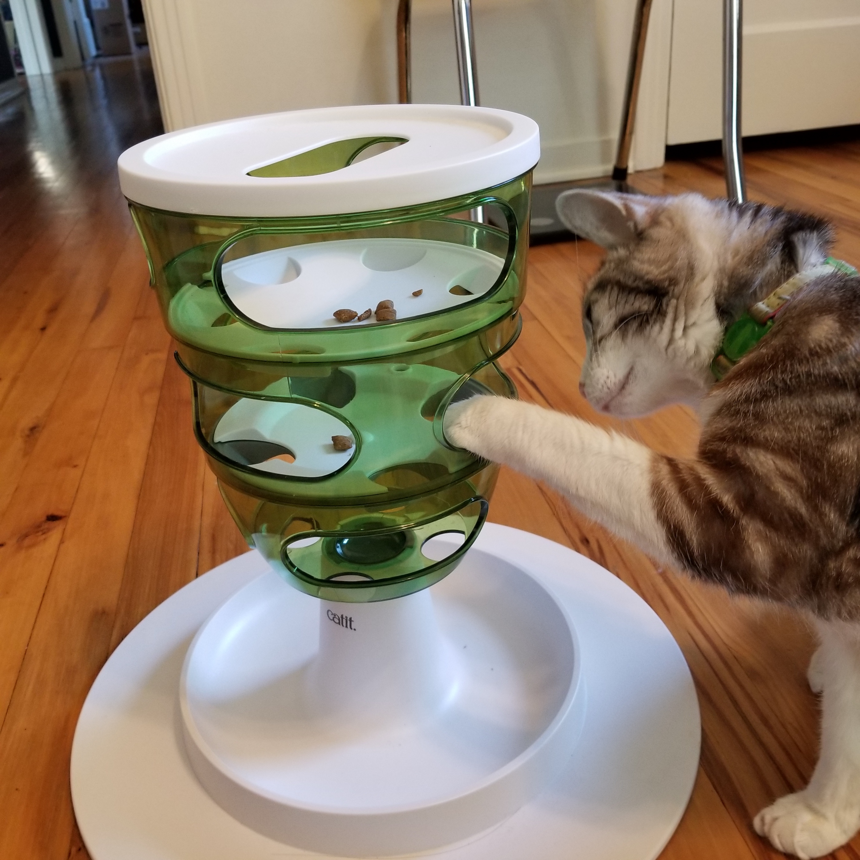 Puzzle feeder